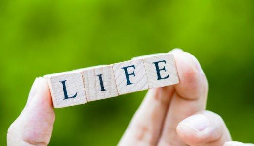 【就活の業界研究】:大手生命保険会社の現状と業績を把握しておこう