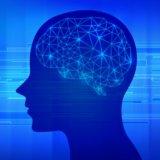自己分析に自信がない人へ、無料の自己分析・特性診断ツールの賢い利用法を徹底解説